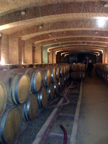 Undurraga Winery, Maipo Valley, Chile.